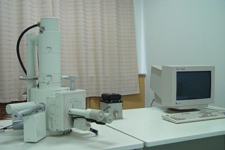 日本扫描电镜